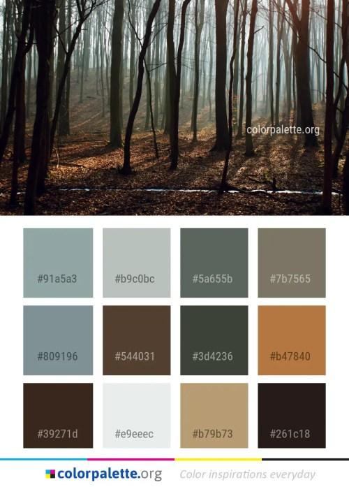Bistre Color Palette ideas | colorpalette org - Part 3