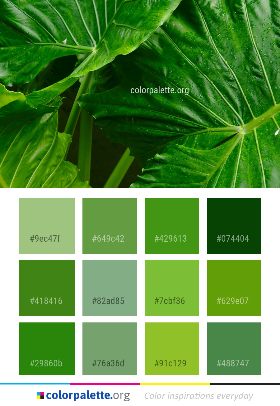 Green Colors For Living Rooms: Leaf Plant Green Color Palette