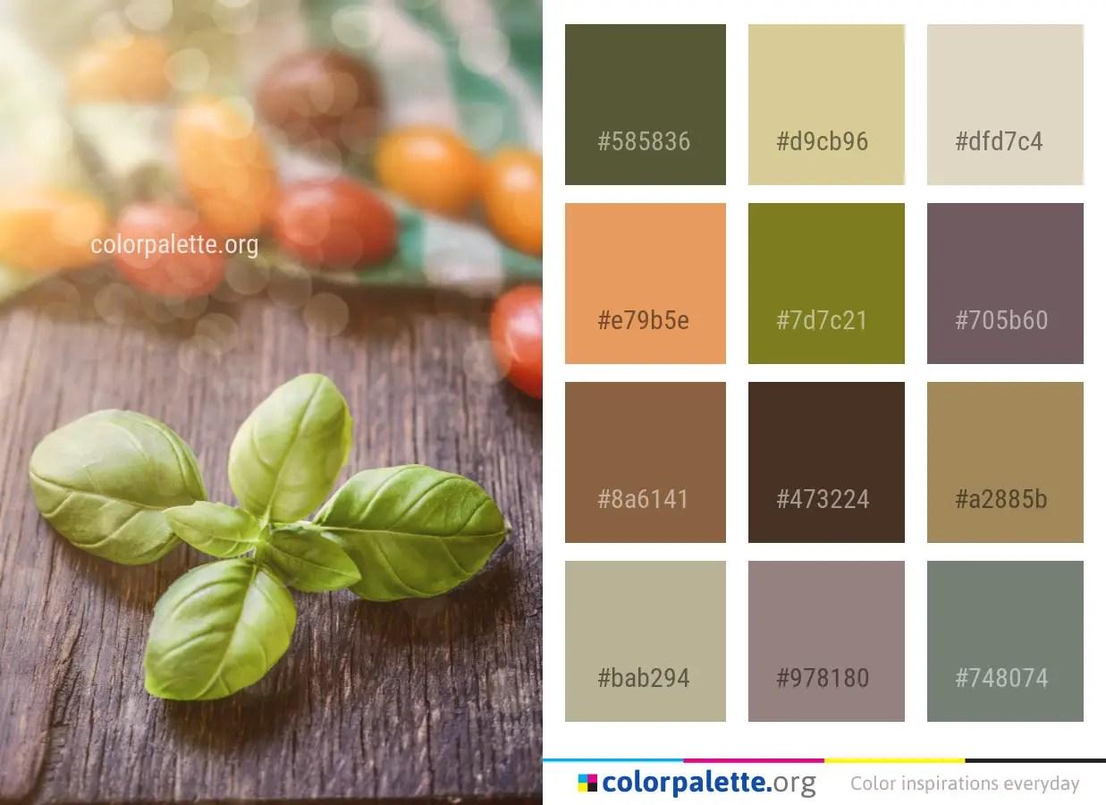 Natural Foods Vegetable Vegetarian Food Color Palette Colorpalette Org