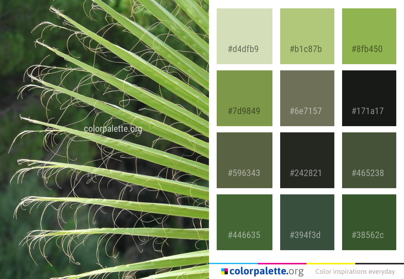 Green Leaf Sky Color Palette | colorpalette.org