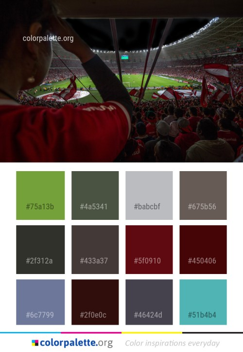 Mahogany Color Palette Ideas Colorpalette Org