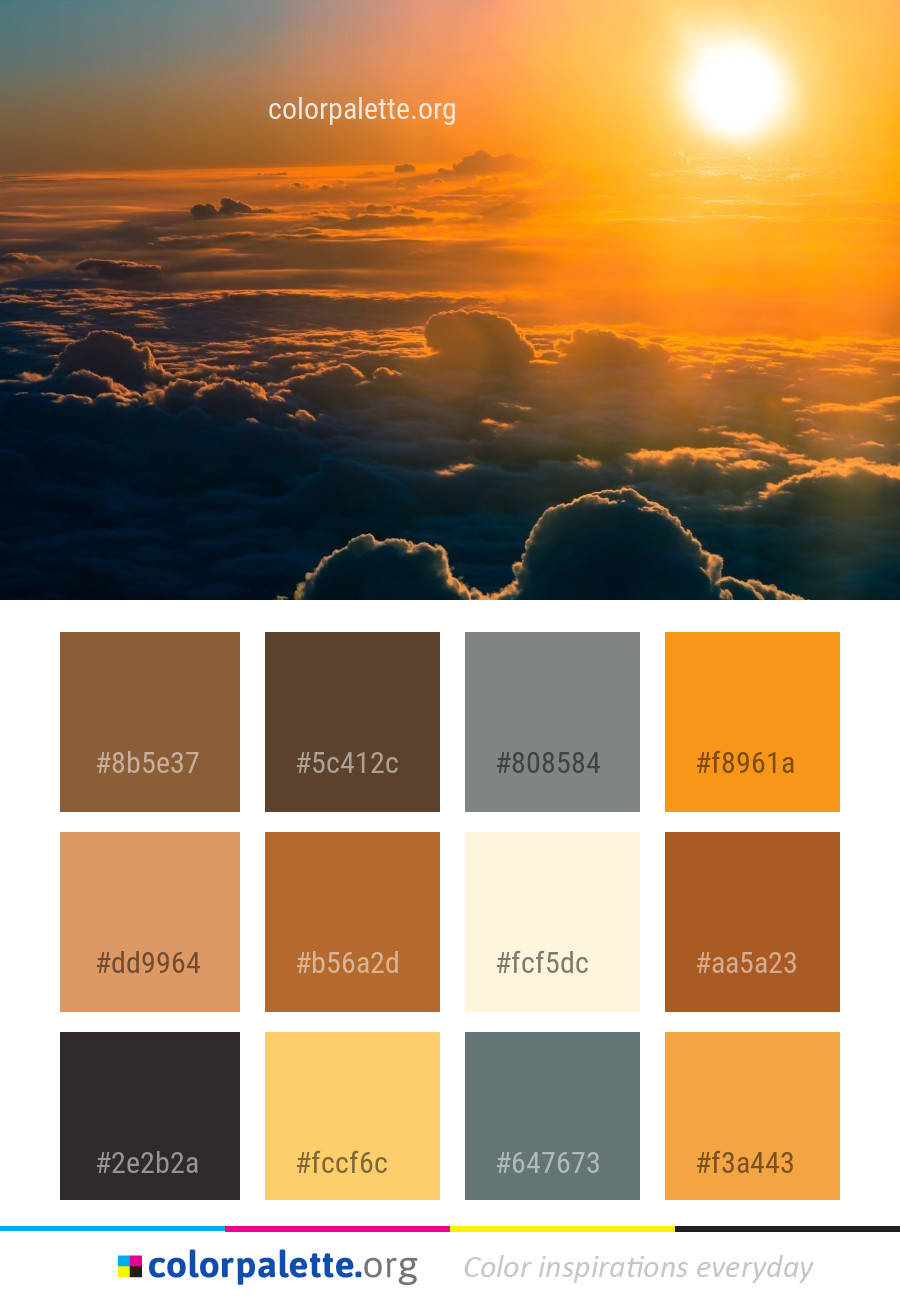 Sandy Brown Color Palette Ideas Colorpalette Org