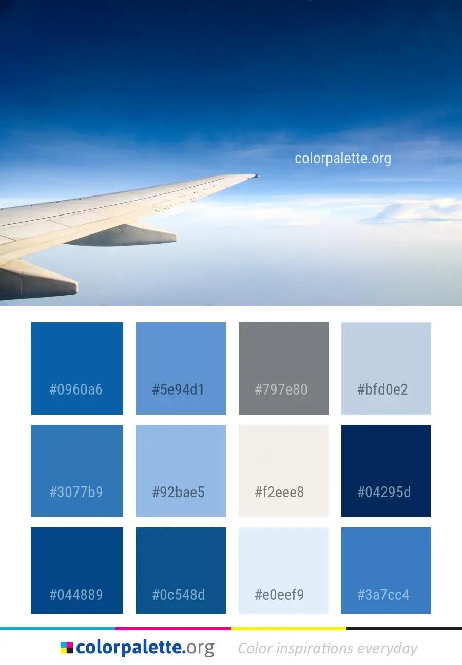 Air Color Palette : color, palette, Daytime, Airline, Color, Palette, Colorpalette.org