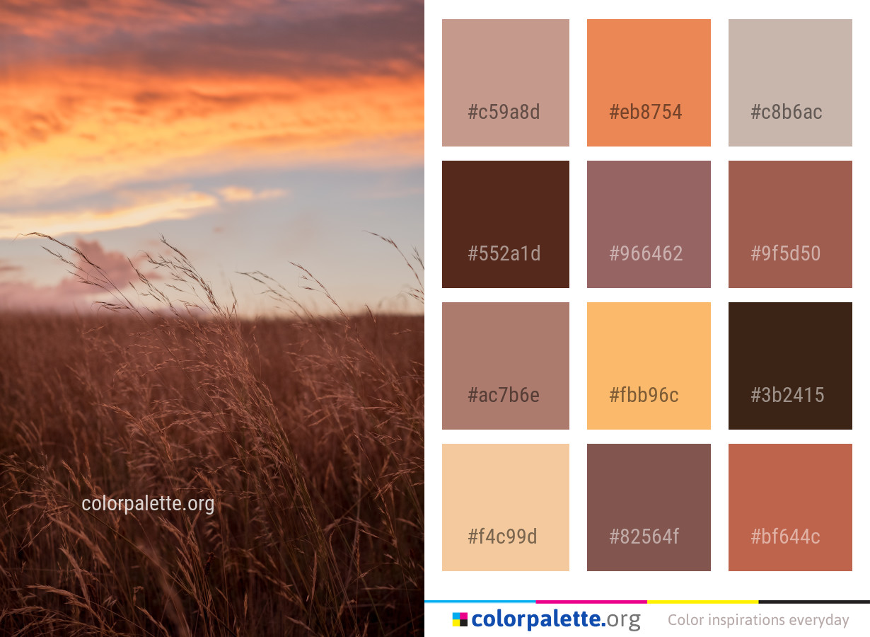 Burnt Sienna Color Palette Ideas Colorpalette Org Popular sienna color of good quality and at affordable prices you can buy on aliexpress. burnt sienna color palette ideas