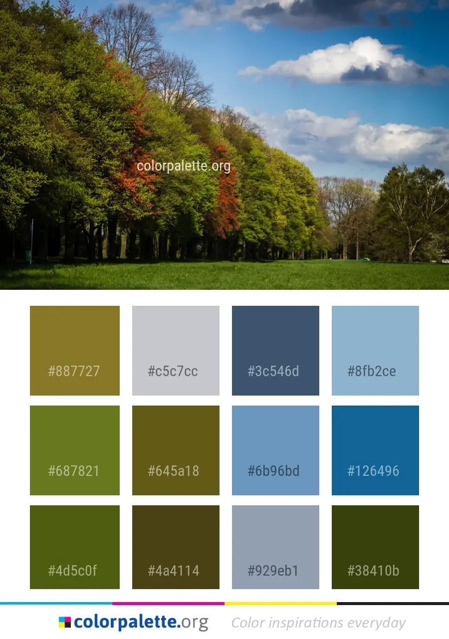 nature palette sky leaf colorpalette card