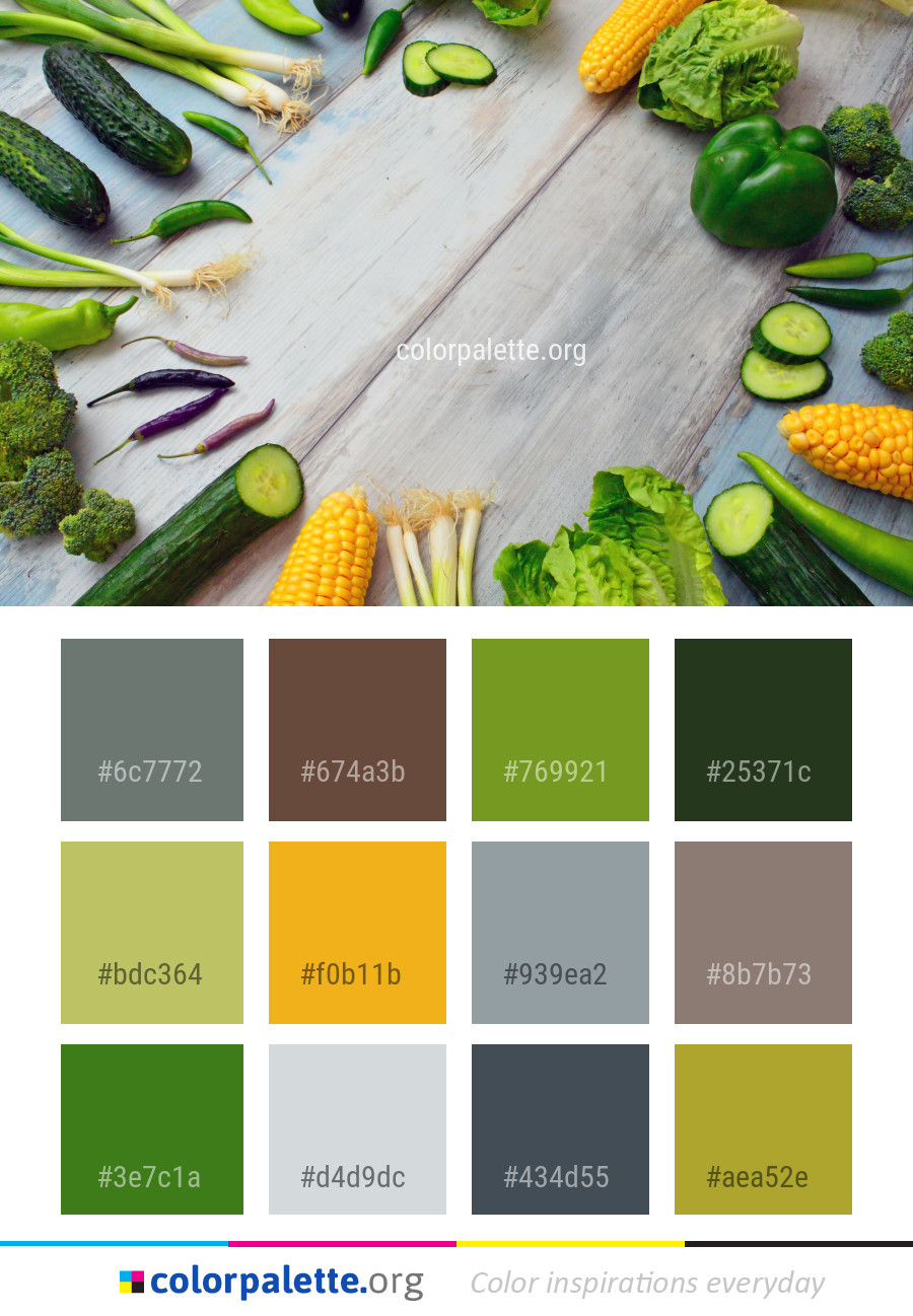 Vegetable Natural Foods Food Color Palette | colorpalette.org