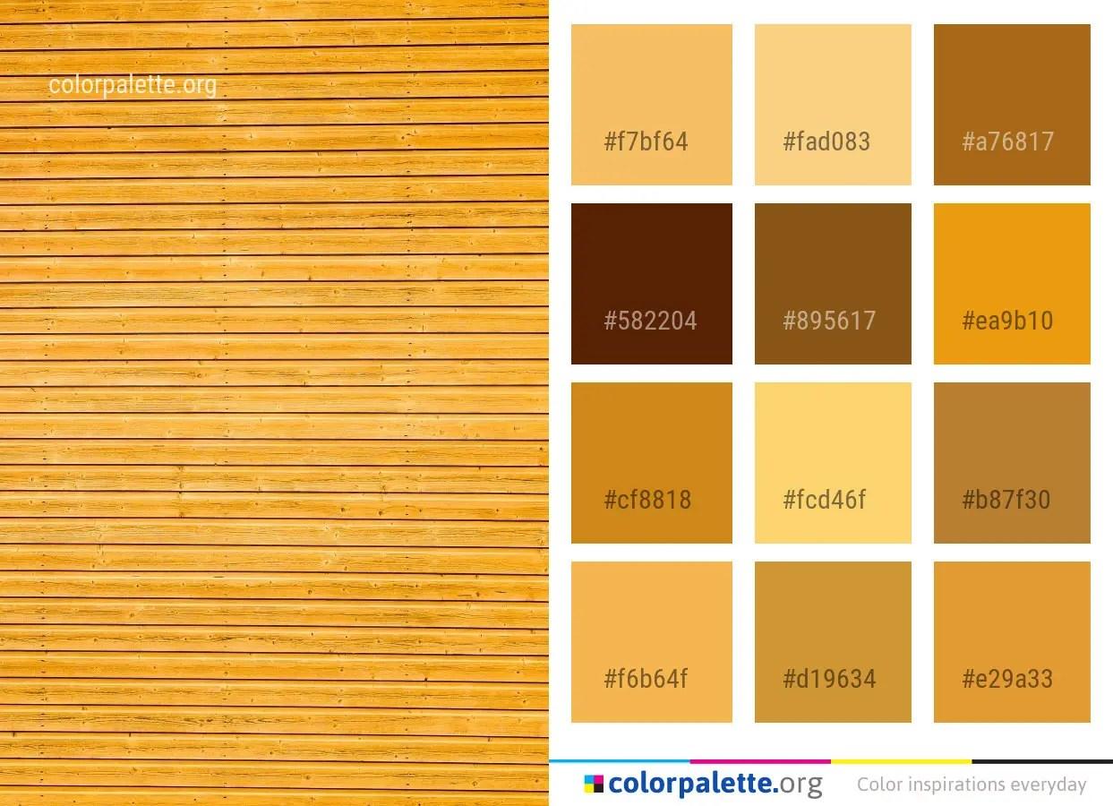 Gamboge Color Palette ideas   colorpalette org
