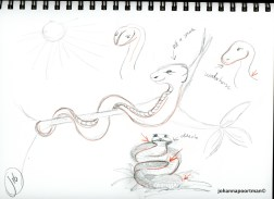 sketch snake003