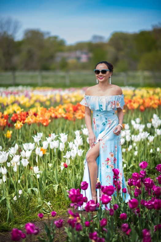 holland, michigan, tulip, tulip time, festival, blue dress, tulip farm, windmill, windmill in us, floral, floral dress, flower, field, flower field, colors, colorful, colorsofmei, colorsofmay