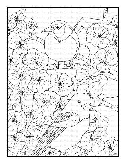 Oriole and Cherry Blossom