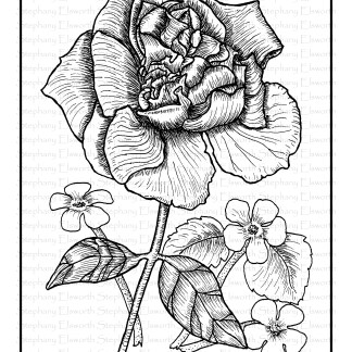 Rose and Flowers Free Coloring Page