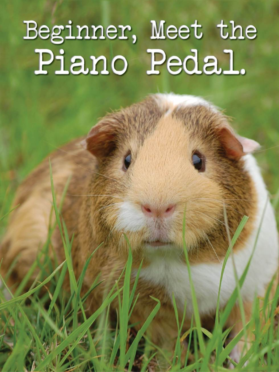 First introduction to the piano pedal
