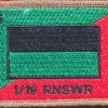 1st/19th Royal New South Wales Regiment