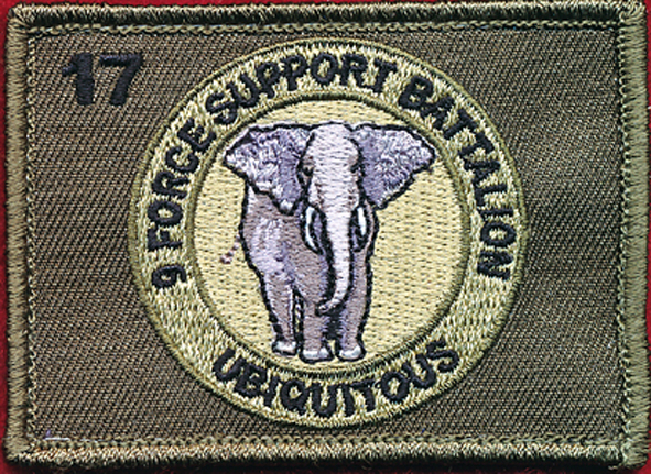 9th Force Support Battalion