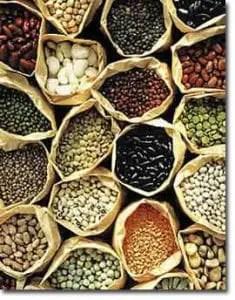 Semenzaio con sementi biologiche per piantine da orto