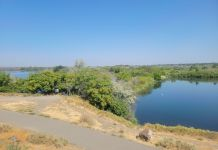 Hikes Tri-Cities