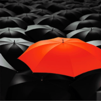 A red umbrella in a crowd of black ones