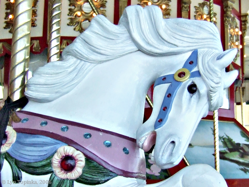 The Blog Carnival of Horses is coming to Equine Ink – EQUINE Ink