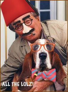 columbo dog 1