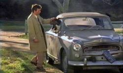 columbo and dog 9