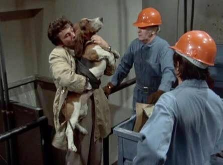 columbo dog most dangerous match