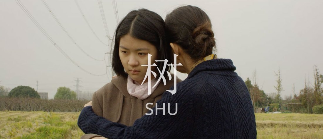 SHU is the story of post-loss adaptation; the loss of a mother causes both the daughter and grandmother to live together under this newly forced and unwanted family dynamic.