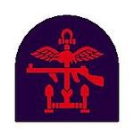 British Army 1st Special Service Brigade shoulder patch