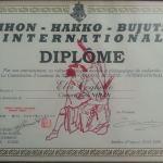 Diploma Karate 5