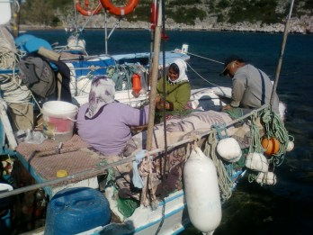 """As part of the """"Transition to Responsible Fishing Practices in Datça Peninsula"""" activities, local fishermen and fisherwomen will have the opportunity to receive a """"Responsible Fisher Certificate"""" to identify consumers and restaurant owners that participated and succeeded in an educational program about responsible fishing practices."""