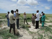 A visit to the landscape area and meeting with a farmer who was harvesting green beans in her field
