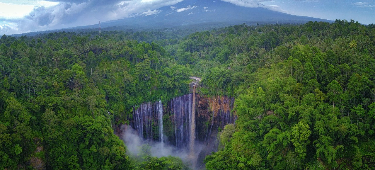 Indonesian nature tours
