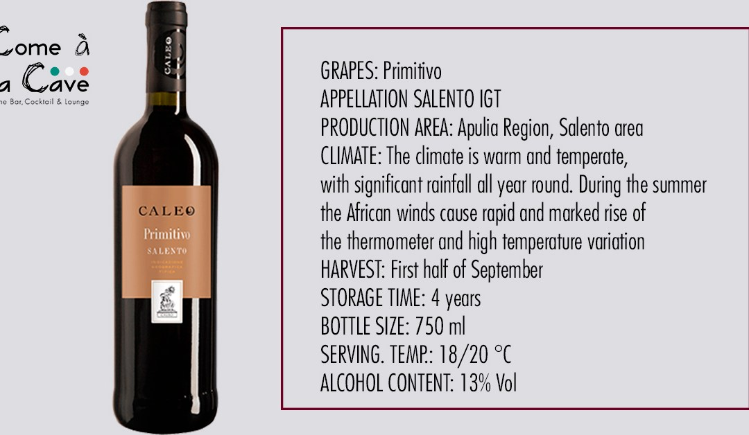 Wine suggestion – Caleo Primitivo Salento IGT