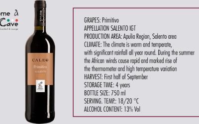 Wine suggestion – Caleo Primitivo Salento IGT