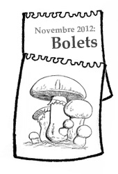 calendari novembre2012