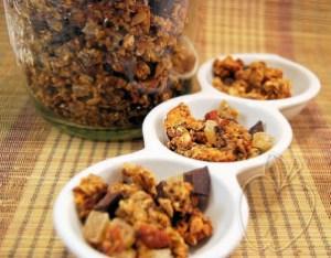 Granola de jengibre chocolate y naranja (15)