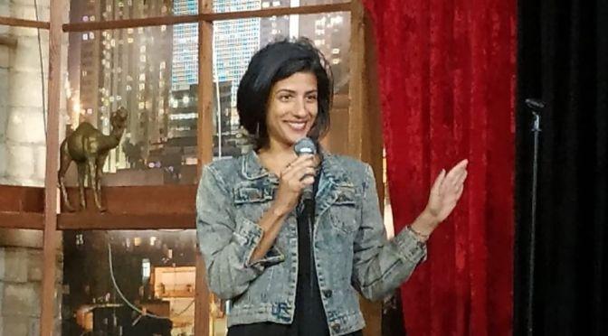 ההרצאה של תכלת גינס – חירשות, קומדיה ומקצועיות
