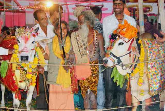 strange rituals in bhiwdawad