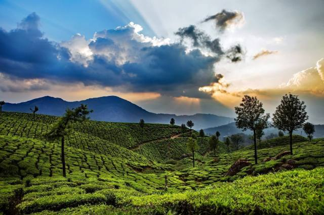 Adventure places in Munnar