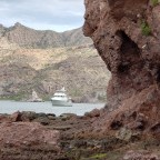 Cruising north in the Sea of Cortez, first edition