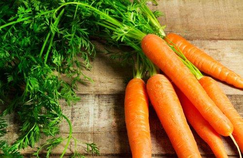 Truco para que la zanahoria brote. Cuándo cosecharlas (videos)