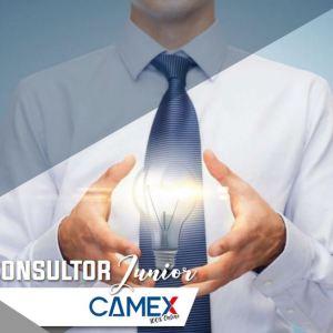 Consultor Junior