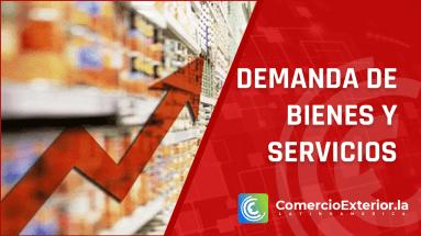 demanda de bienes y servicios