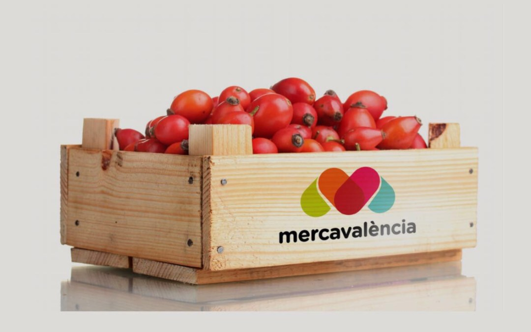 Mercavalència estrena nova imatge, un pas més en la seua renovació