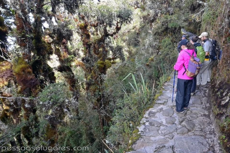 Peru - 05-06-07-08 - 11-2014 (152) cópia