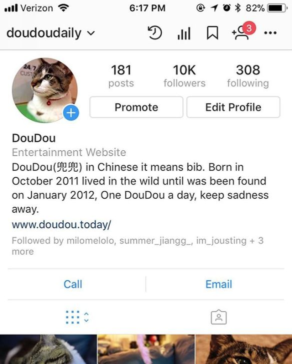 10k followers reached within less than 100 days !!! @doudoudaily