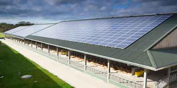 Solar Dairy Farm