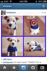 Instagram Feature