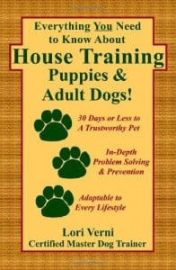 Housebreaking a puppy or older dog. Potty training puppy. Dog training.