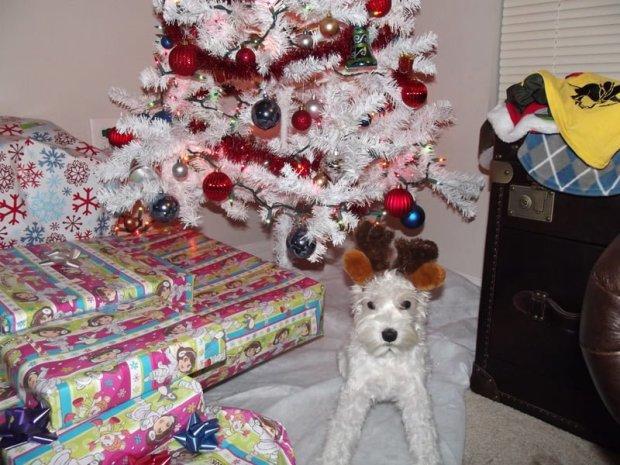 Dog Antlers Costume - Pet Antlers
