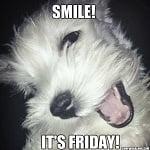 Thank God It's Friday – Dog Edition Friday Memes!